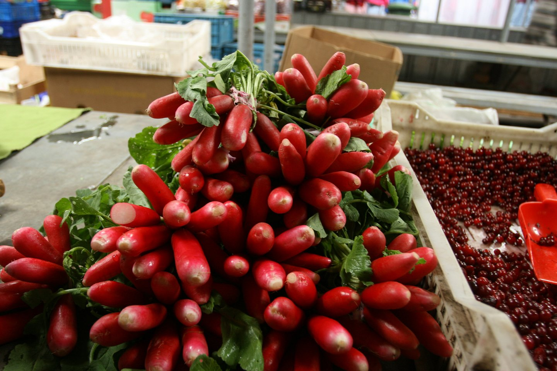Tiek šeštadieniniame, tiek sekmadieniniame turguje akys tiesiog raibo nuo žalumynų. Ant prekybininkų stalų buvo gausu svogūnų laiškų, ridikėlių, krapų, salotų.<br>M.Patašiaus nuotr.