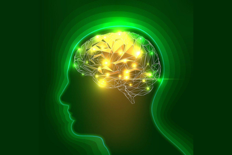 """Yra įrodyta, kad meditacijos metu neuronų """"aruodas"""" pagausėja, o tokie ląstelių kiekio smegenyse pokyčiai lemia geresnę kognityvinę šio vidaus organo veiklą ir bendrą mūsų jauseną.<br>123rf iliustr."""