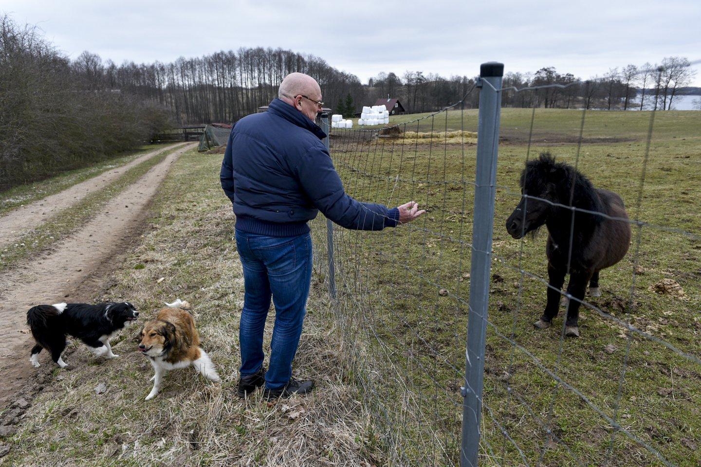 Nuo pareigų nušalintam ir teisėsaugos užmirštam teisėjui V.Kažiui šiuo metu telieka rūpintis ūkiu – jis su šeima Molėtų rajone augina kelias dešimtis mėsinių galvijų.<br>V.Ščiavinsko nuotr.