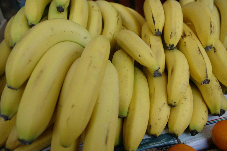 Bananai – vieni mėgstamiausių lietuvių vaisių.<br>T.Stasevičiaus nuotr.