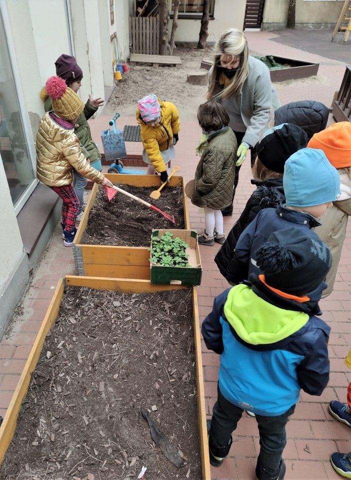 Mažieji daržininkai augins žemuoges.<br>Organizatorių nuotr.