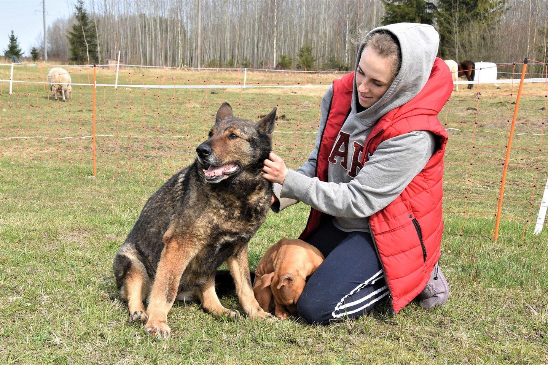Ne tik Skaistė myli šunis – keturkojai taip pat varžosi dėl jos dėmesio.<br>Asmeninio albumo nuotr.