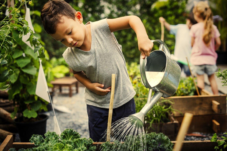 Pedagogai įsitikinę, kad vaikai savo pačių užsiaugintas daržoves valgo daug mieliau.<br>123rf nuotr.