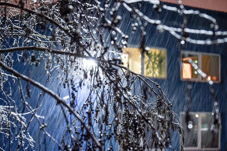 Po giedro šeštadienio orai vėl bjurs – stiprus vėjas atgins lietų ir šlapdribą.<br>V.Ščiavinsko nuotr.