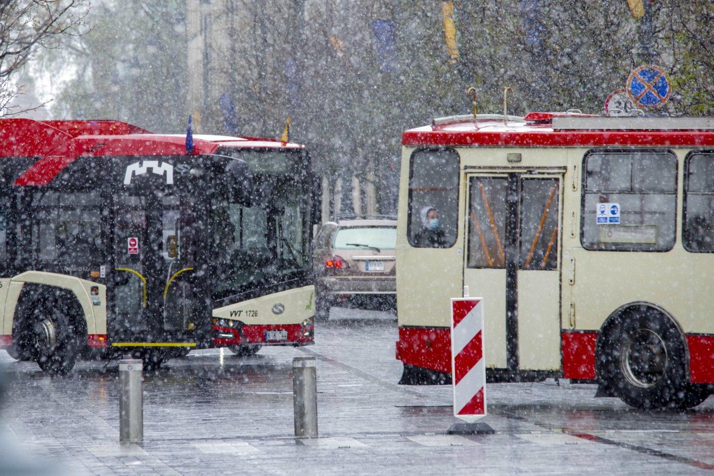 Gegužės mėnesį Lietuvą užklupo sniegas ir šlapdriba.<br>V.Ščiavinsko nuotr.