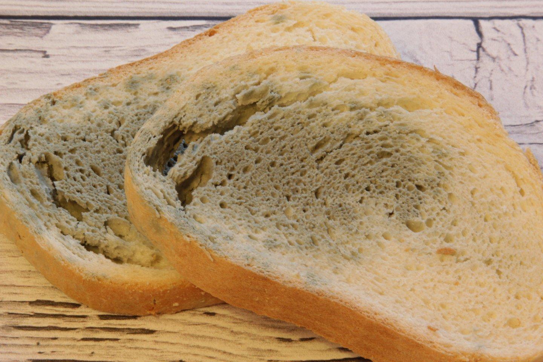Deja, jei pamatote apipelijusią duonos ar batono riekelę, greičiausiai bus paveiktas ir likęs kepalas.<br>123rf nuotr.