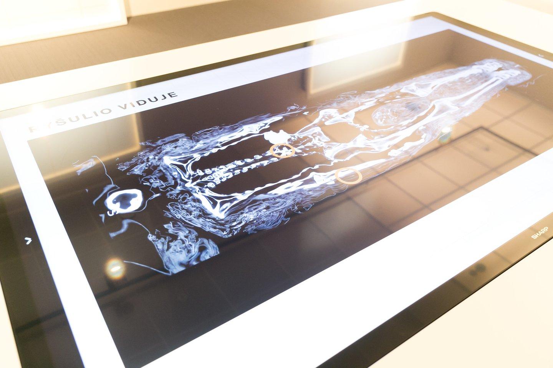 Lankytojams suteikta galimybė pasijusti ir mokslininkais mumijų tyrinėtojais.<br>T. Bauro nuotr.
