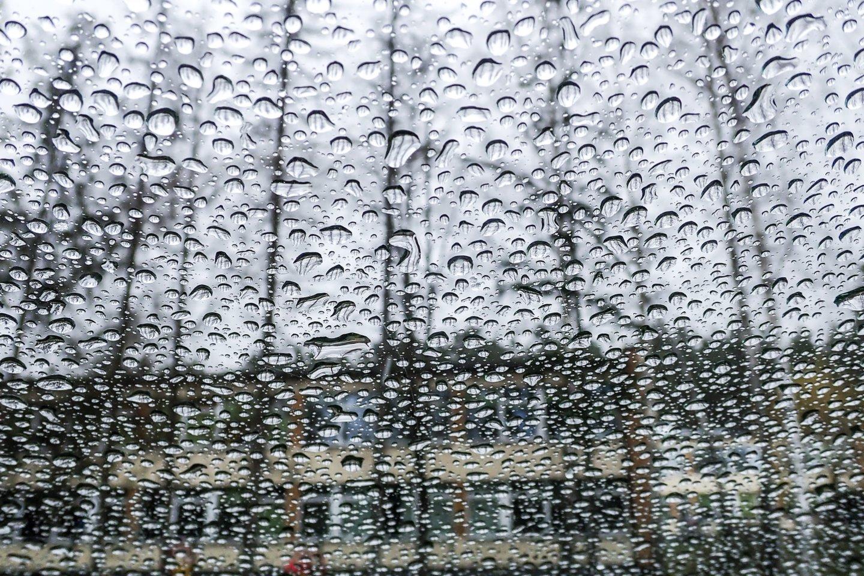 Beveik visoje šalyje protarpiais palis, o iš galingesnių debesų kai kur gali pagrūmoti perkūnija.<br>V.Ščiavinsko nuotr.