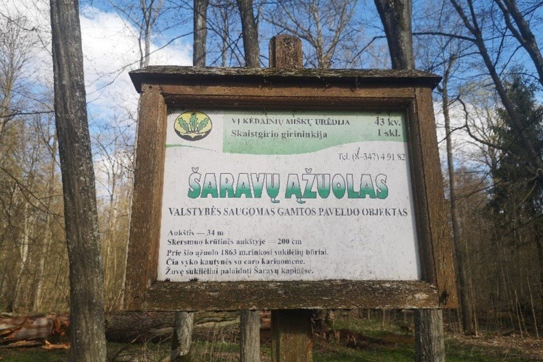 Saugomas paveldas.<br>Valstybinių miškų urėdijos nuotr.