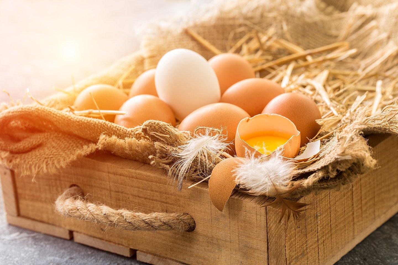 Viena keistesnių istorijų yra apie Jorkšyro raganą ir ji susijusi su klasta, žmogžudystėmis ir... pranašiškais kiaušiniais.<br>123rf nuotr.