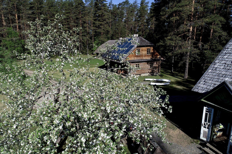 V.Šerėno rankomis špuoselėtoje sodyboje Švenčionių rajone, Labanoro regioniniame parke dabar šeimininkauja jauna vilniečių šeima.<br>V.Ščiavinsko nuotr.