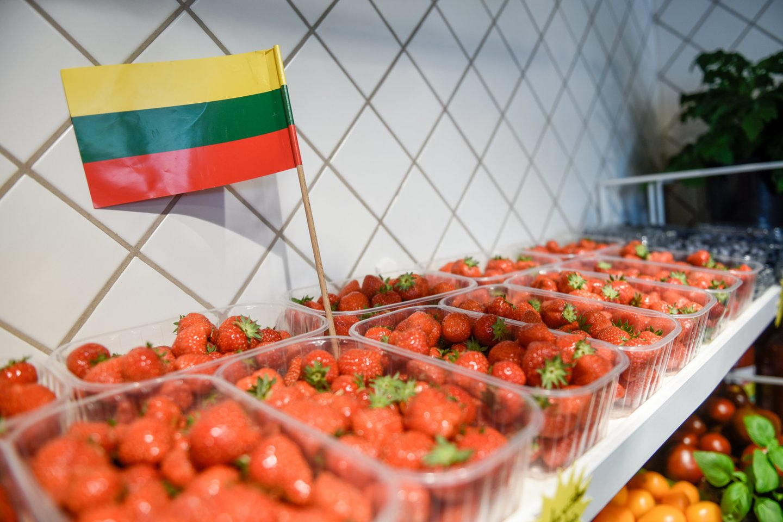 Kėdainių rajono Kunionių kaimo ūkininkai Sigita ir Nerijus Žilinskai džiaugiasi sulaukę pirmojo šių metų derliaus, tačiau pažymi, kad šiemet derlius vėluoja, lyginant su praėjusiais metais.<br>D.Umbraso asociatyvi nuotr.