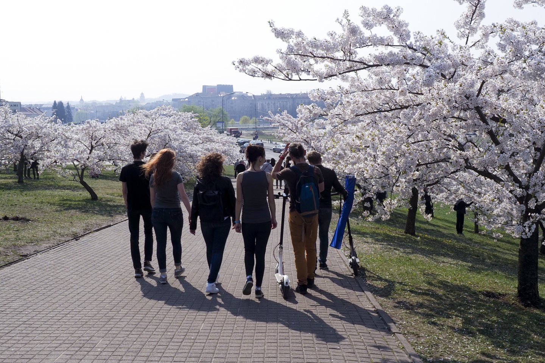 Vilnius vejasi Baltijos šalių lyderį Taliną.<br>V.Ščiavinsko nuotr.