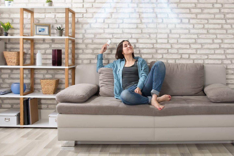 Kondicionierius namuose gali būti ne tik naudingas, bet ir estetiškas įrenginys.<br>123rf nuotr.