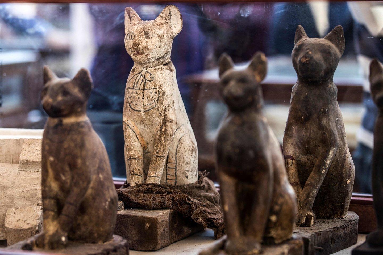 Senovės egiptiečiai buvo žinomi dėl savo meilės katėms – ir viskam, kas su jomis susiję. Todėl netrūksta su katėmis susijusių radinių – nuo statulų iki įmantrių papuošalų.<br>AFP / Scanpix nuotr.