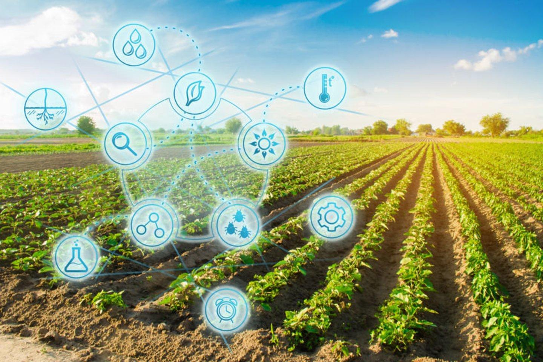 Gyvybiškai reikšmingą agrosektorių pakeitė ir vis dar keičia inovacijos bei kokybiškos žinios. Skirtingų kompetencijų, kompleksinių žinių ir technologijų sąveika atveria naujas galimybes bei neįtikėtiną potencialą.<br>123rf.com