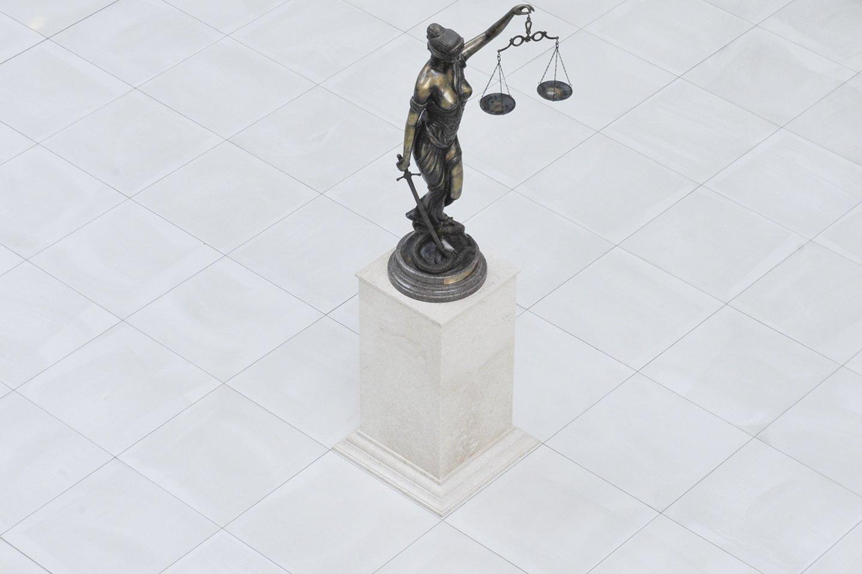 Konstitucijai prieštaraujančiu pripažintos ir 2019-ųjų pabaigoje priimtos Akcizų įstatymo pataisos.<br>V.Ščiavinsko nuotr.