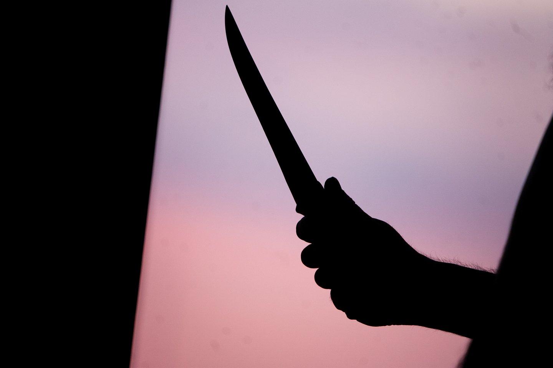 Airijos lietuvis dukros akivaizdoje nužudė vaiko mamą: išgirdo teismo nuosprendį.<br>J.Stacevičiaus nuotr.