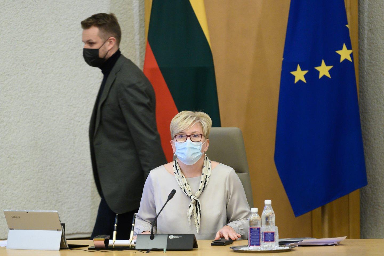 Ingrida Šimonytė ir Gabrielius Landsbergis.<br>V.Skaraičio nuotr.