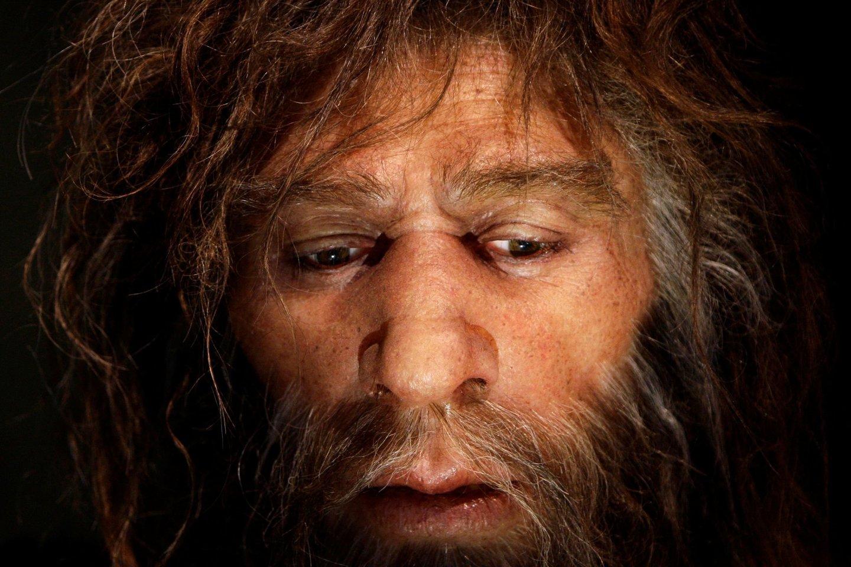Panašu, neandertaliečiai neturėjo tų neuroninių ryšių, kurie išsivystė sapiensams pažinimui ir komunikacijai, būdingai mūsų rūšiai.<br>Reuters / Scanpix nuotr.