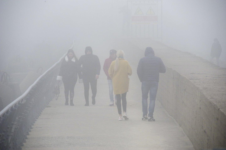 Kitos savaitės pradžioje slinks atmosferos frontas – įkyresnio lietaus klius daugeliui rajonų.<br>V.Ščiavinsko nuotr.