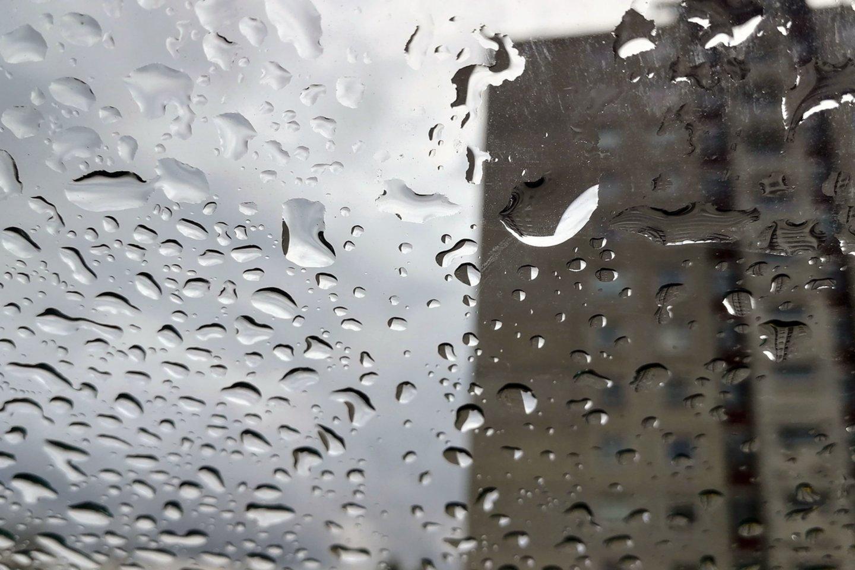 Kitos savaitės pradžioje slinks atmosferos frontas – įkyresnio lietaus klius daugeliui rajonų.<br>M.Patašiaus nuotr.