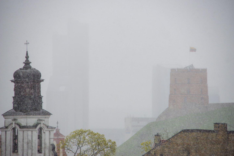 Pirmadienis bus gana lietingas.<br>V.Ščiavinsko nuotr.