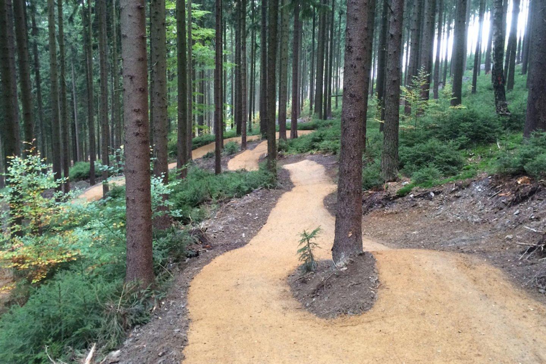 Kalnų dviračių trasa bus įrengta greta Joninių slėnio.<br>velosolutions.com nuotr.