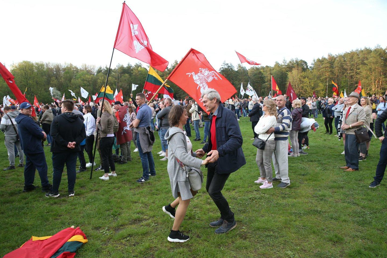 Didysis šeimų gynimo maršas.<br>R.Danisevičiaus nuotr.