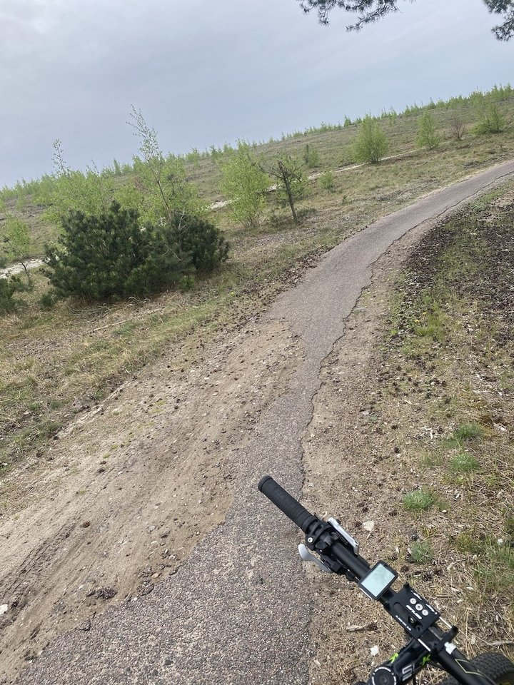 Jų teigimu, nenuostabu, kad dviratininkai iš Klaipėdos vis dažniau renkasi kitą dviračių takų kryptį – į Palangą.<br>P.Matulevičiaus nuotr.