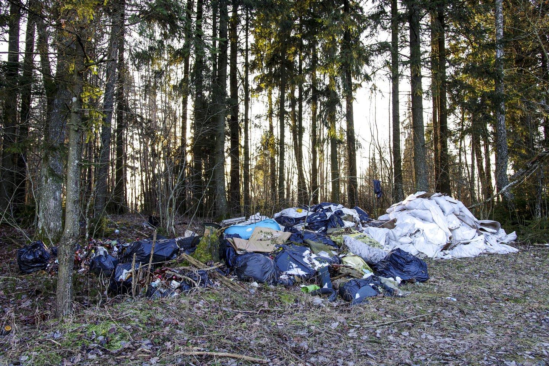 Gyventojams už netinkamai tvarkomas atliekas yra taikomos baudos: įspėjimas arba 30–140 eurų bauda<br>V.Ščiavinsko nuotr.