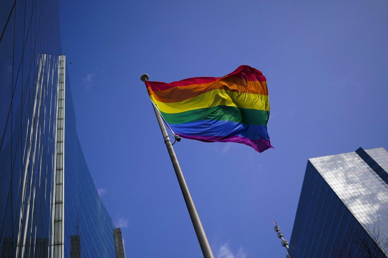 Seime kelią besiskinantis partnerystės įstatymas yra itin svarbus LGBT bendruomenei.<br>AP/Scanpix nuotr.