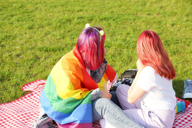 Seime kelią besiskinantis partnerystės įstatymas yra itin svarbus LGBT bendruomenei.<br>T.Bauro nuotr.