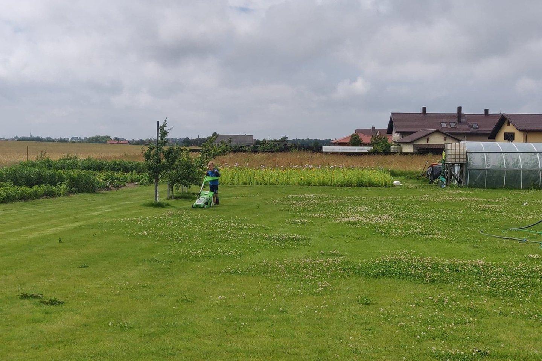 Mėgstamiausias Kristijono Poškaus darbas – pjauti žolę.<br>Asmeninio albumo nuotr.