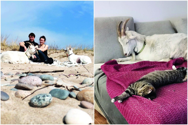 Karklėje gyvenantis Klevas Butkus (33 m.) savaitgaliais prie jūros traukia pasivaikščioti ne tik su savo šunimi, bet ir su ožiu Adomu.<br>Nuotr. iš asmeninio albumo