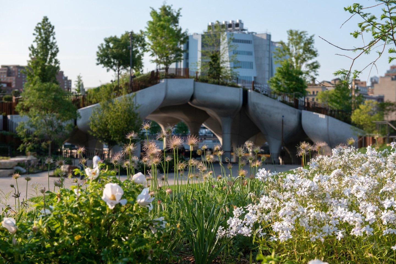 """Nors projekto JAV, kurio autoriai – architektų biurai """"Heatherwick Studio"""" ir MNLA, pavadinimas """"Mažoji sala"""", jo vizija ir biudžetas buvo milžiniški.<br>Timothy Schenck / archdaily.com nuotr."""