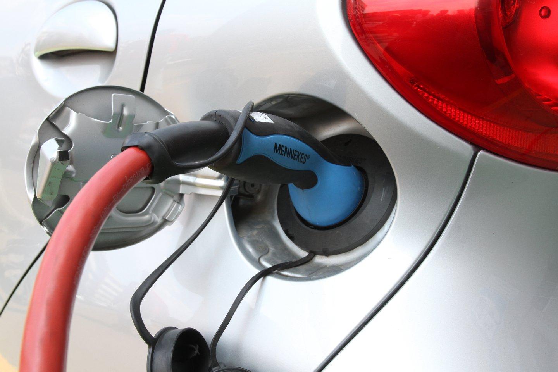 Šiuo metu po Lietuvą išdėstyta net apie 360 elektromobilių įkrovimo stotelių, todėl elektromobilių entuziastai tvirtina, kad po Lietuvą su šia transporto priemone galima keliauti, aišku, laikantis tam tikrų taisyklių.<br>M.Patašiaus nuotr.