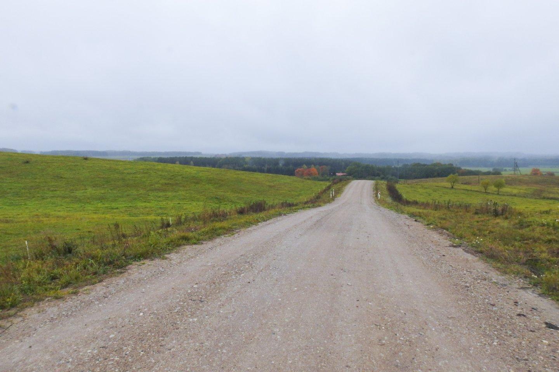 Seimui raginant greičiau asfaltuoti žvyrkelius, premjerė Ingrida Šimonytė sako, kad dėl to gali nukentėti kiti ekonomikos sektoriai.<br>V.Ščiavinsko nuotr.
