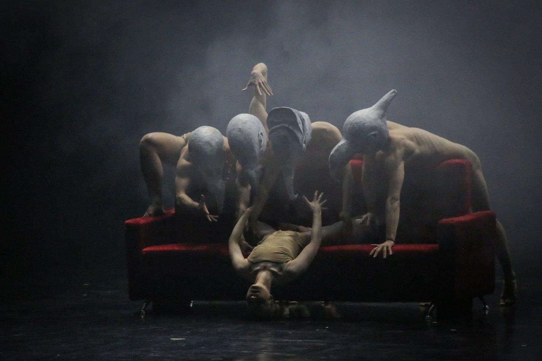 """""""Dėmesio! Baletas"""" Klaipėdoje.<br>V.Petriko nuotr."""