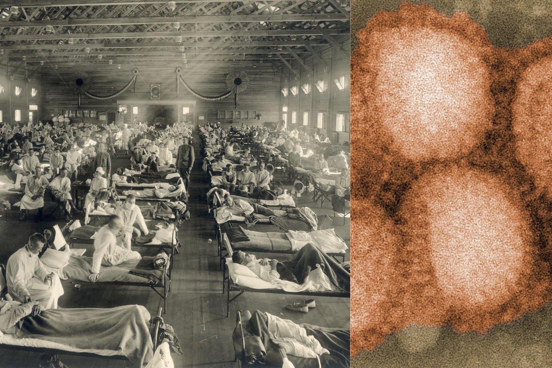 Apskaičiavimai rodo, kad ispaniškuoju gripu visame pasaulyje buvo užsikrėtę iki 1 milijardo žmonių – kai pasaulyje tuo metu gyveno tik 2 milijardai.<br>Wikimedia commons, lrytas.lt mont.