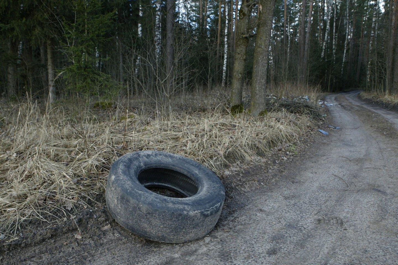 Miškai, vandens telkiniai tikrai nėra tinkamos vietos padangų utilizavimui.<br>T.Stasevičiaus nuotr.