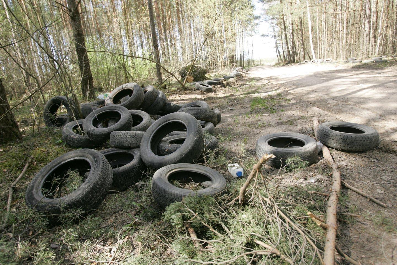 Miškai, vandens telkiniai tikrai nėra tinkamos vietos padangų utilizavimui.<br>T.Bauro nuotr.