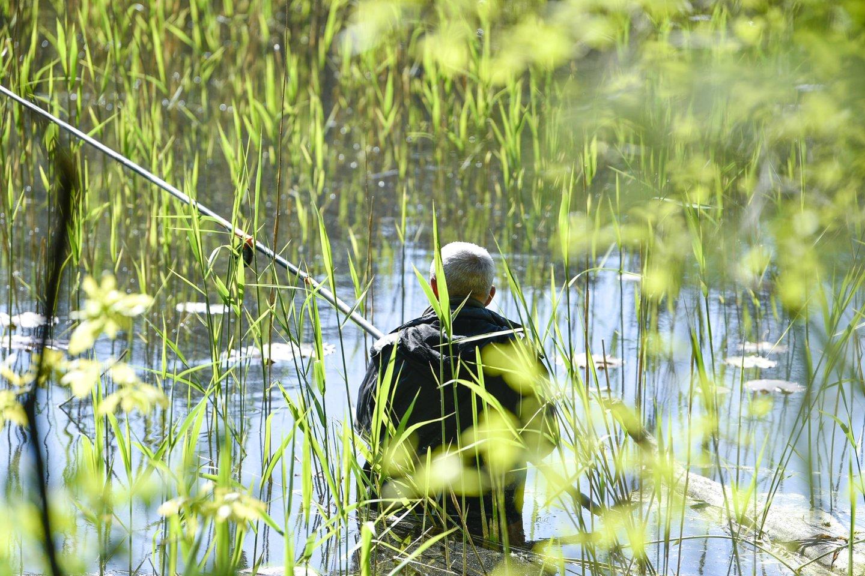 Po gana drėgnos gegužės, pirmoji kalendorinės vasaros savaitė Lietuvoje bus sausesnė<br>V.Ščiavinsko nuotr.