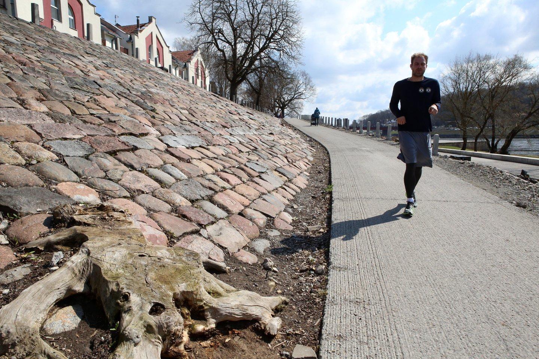 Po gana drėgnos gegužės, pirmoji kalendorinės vasaros savaitė Lietuvoje bus sausesnė<br>M.Patašiaus nuotr.
