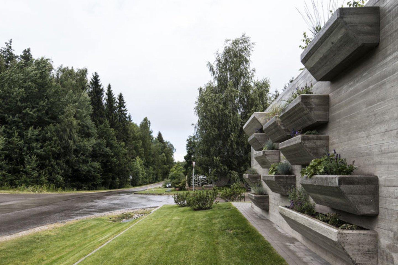 Namą puošia kone 150 betoninių vazonų, kuriuose – šeimininkės priežiūrimas augmenija.<br>I. Saudargaitės nuotr.