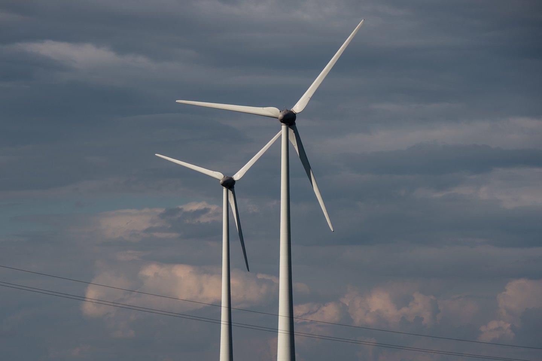 """Į """"žalesnio"""" verslo kelią jį atvedė projektai, susiję su Kioto protokolu.<br>V.Ščiavinsko nuotr."""