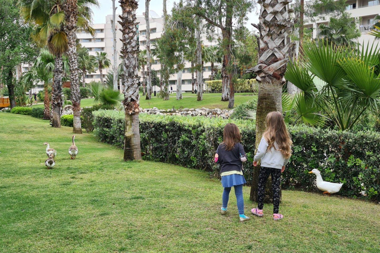 Šeima pasidalino savo įspūdžiais, kaip atrodo poilsis Turkijoje.<br>Autorės nuotr.