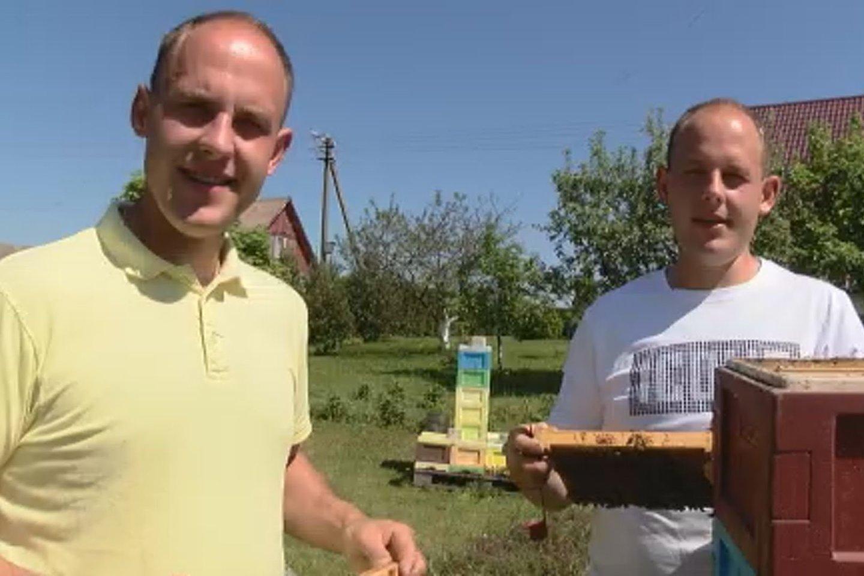 Broliai dvyniai Vilius ir Ignas pasidžiaugė, kad pirmasis medunešis bus geras.<br>Laidos stop kadras.