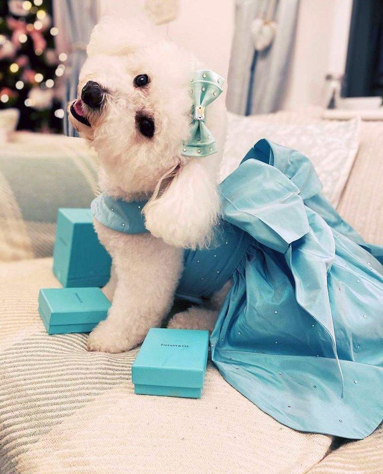 """""""Tiffany"""" pavadinimas yra tapęs prabangos, išskirtinumo ir autentiškumo sinonimu dar nuo 1837 m."""