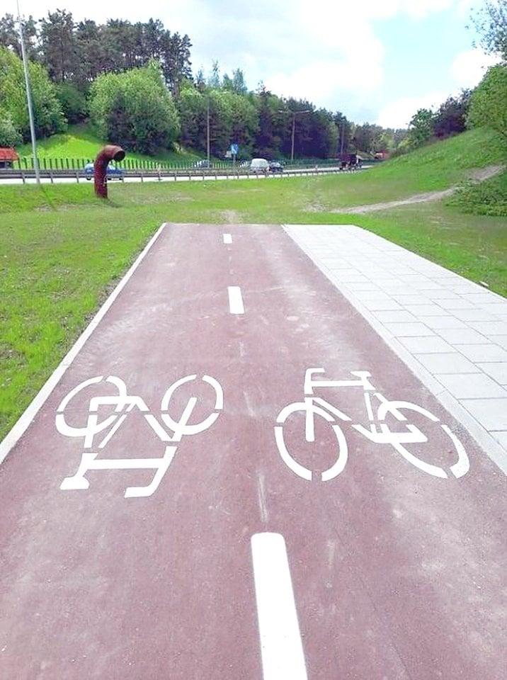 Šią vasarą dviračiu ar pėsčiomis galima nukeliauti į pievą.<br>V.Skaraičio nuotr.